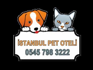 istanbul pet oteli
